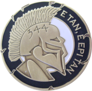 org_usaf_344_trs_spartan_challenge_coin