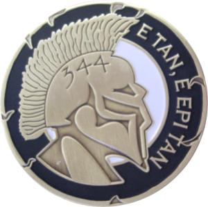 org_usaf_344_trs_spartan_challenge_coin