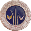 usaf_690_nsg_challenge_coin_595