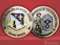 159th-FW-Louisiana-ANG-Challenge-Coin-Showcase