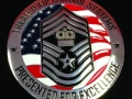 USAF_Chief_PAC AF_challenge coin_1